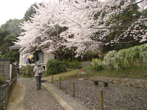 2011_04_09_06.jpg