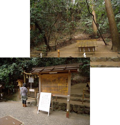 2011_04_09_16.jpg