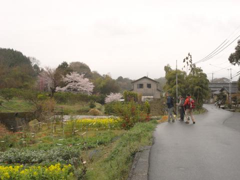 2011_04_09_26.jpg