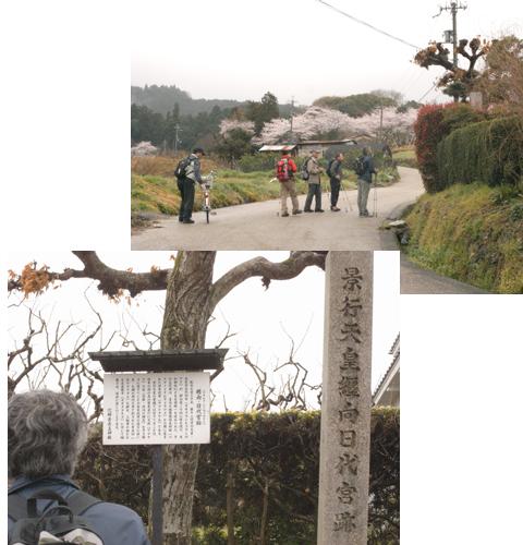 2011_04_09_31.jpg