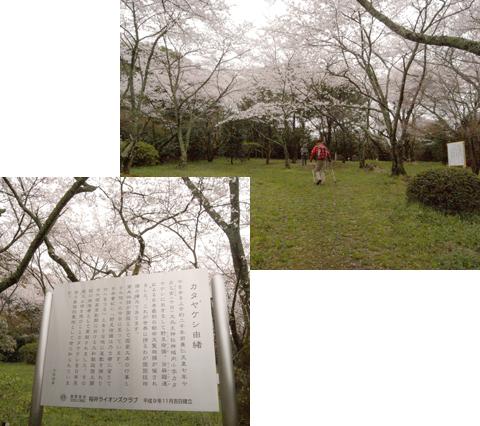 2011_04_09_34.jpg