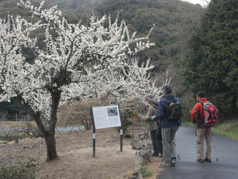 2011_04_09_37.jpg