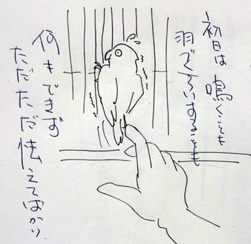 もんじろう日記_1.jpg