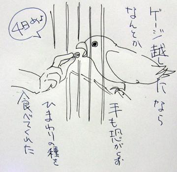 もんじろう日記_3.jpg