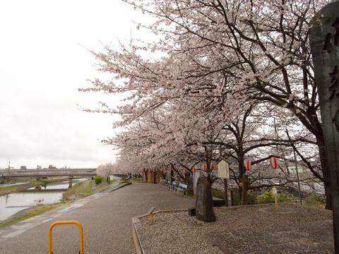 2011_04_09_05.jpg