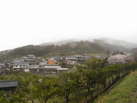2011_04_09_24.jpg