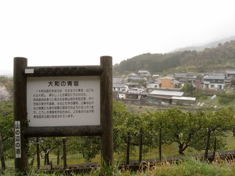 2011_04_09_25.jpg