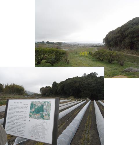 2011_04_09_36.jpg