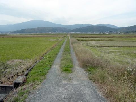 NW20111103_takasima_3.jpg