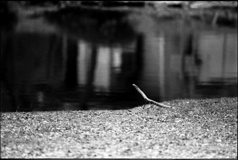 Nikon_F3_20100123_20.jpg